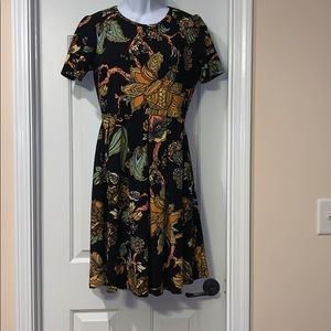 Lula Roe dress 2X